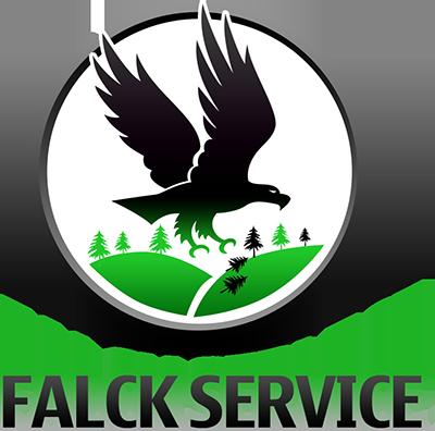 Falck Service